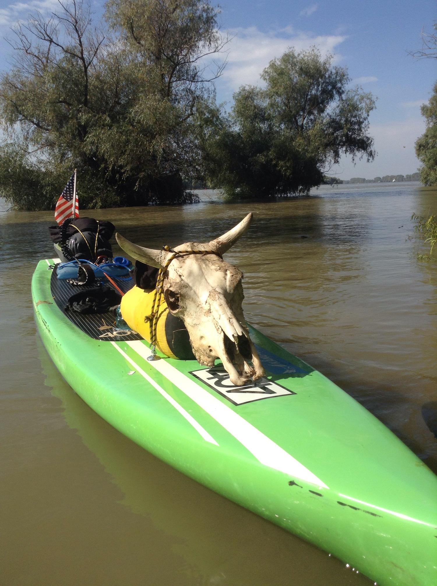 Джейк намира този кравешки череп по пътя си и решава да го вземе със себе си.