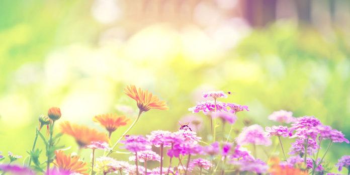пролетта като ново начало
