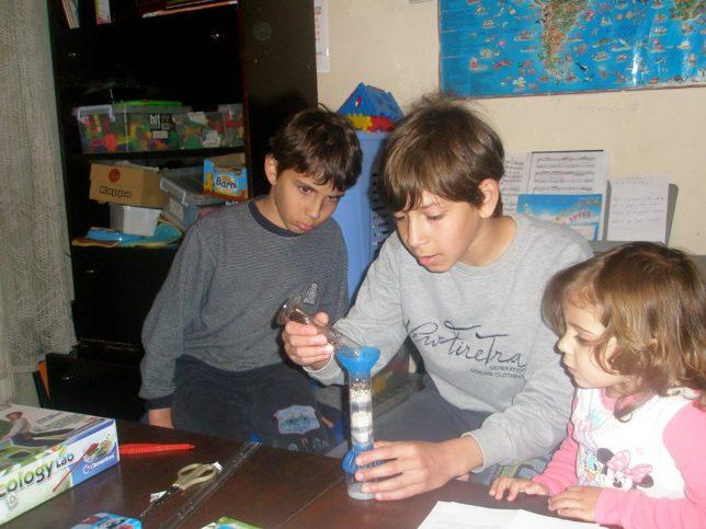 Домашно образование