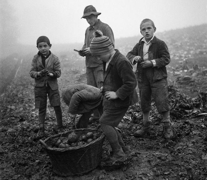 децата роби на Швейцария