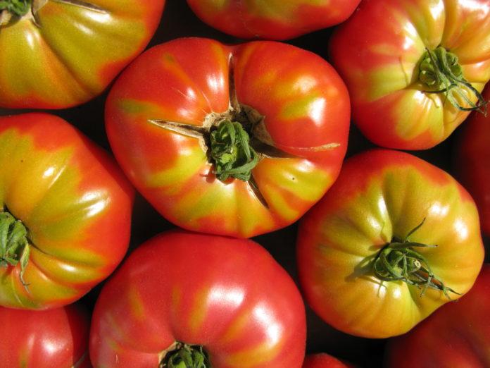 доматите