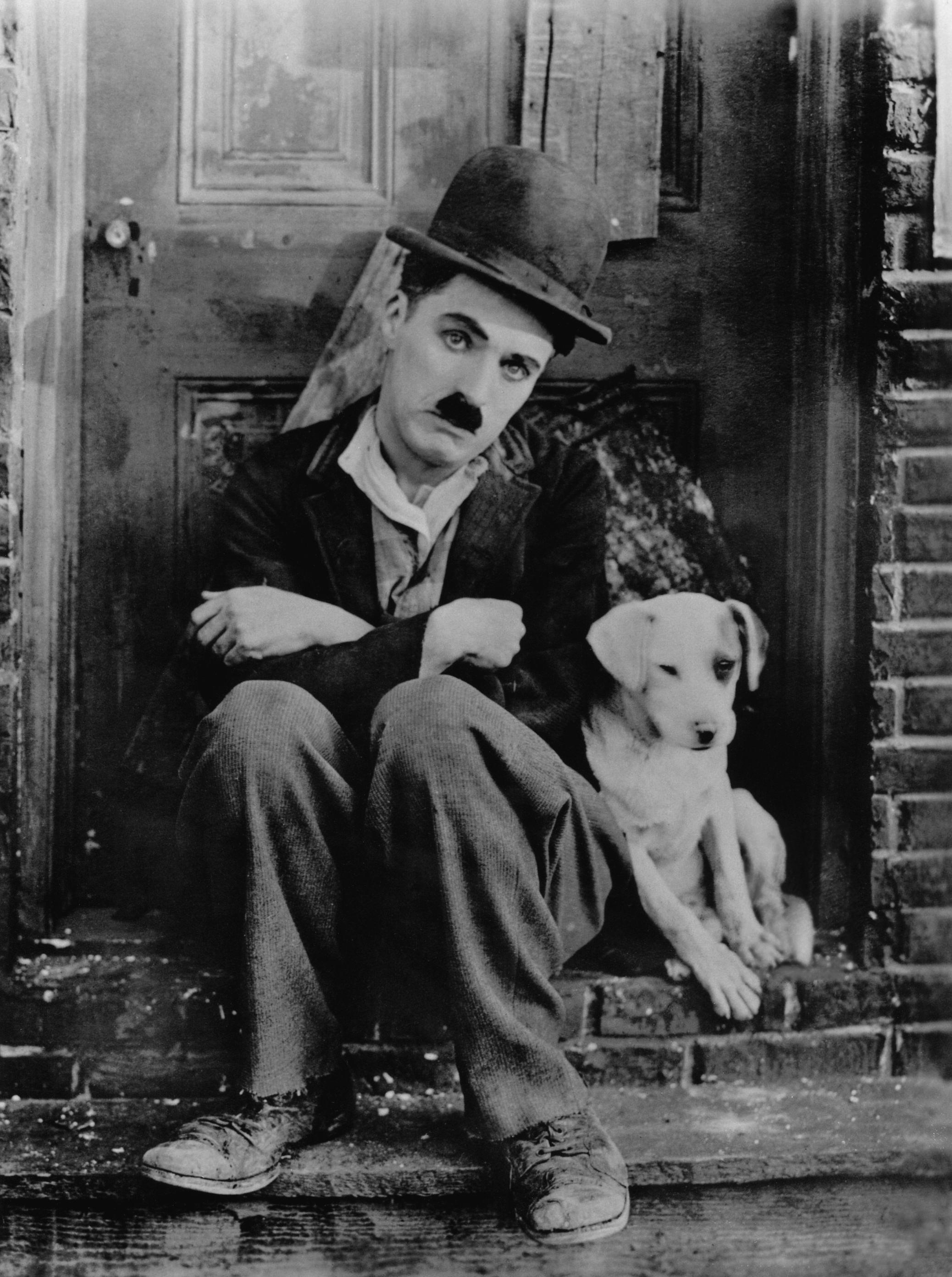 Chaplin_A_Dogs_Life