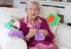 столетница плете