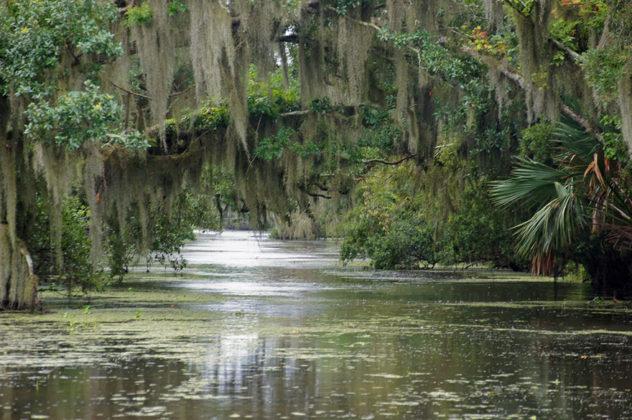 Луизиана, САЩ