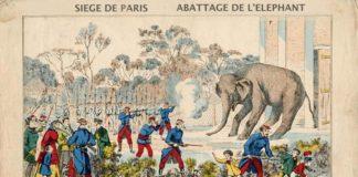 парижани в зоопарка на Коледа