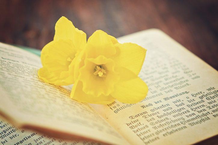 book-flower