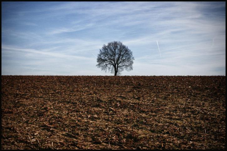Много често интелигентните хора са самотници Снимка: Bert Kaufmann via Foter.com / CC BY