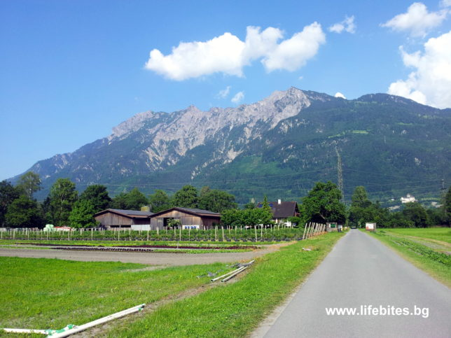разни странни Швейцария