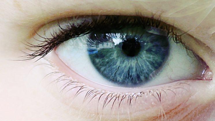 Мускулите на очите са сред най-ангажираните в човешкото тяло. Снимка: Per Jensen via Foter.com / CC BY-NC-SA