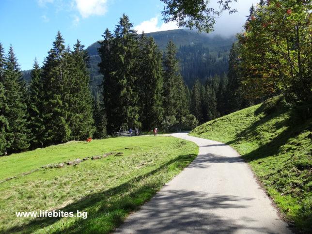 туристическа пътека в Швейцария