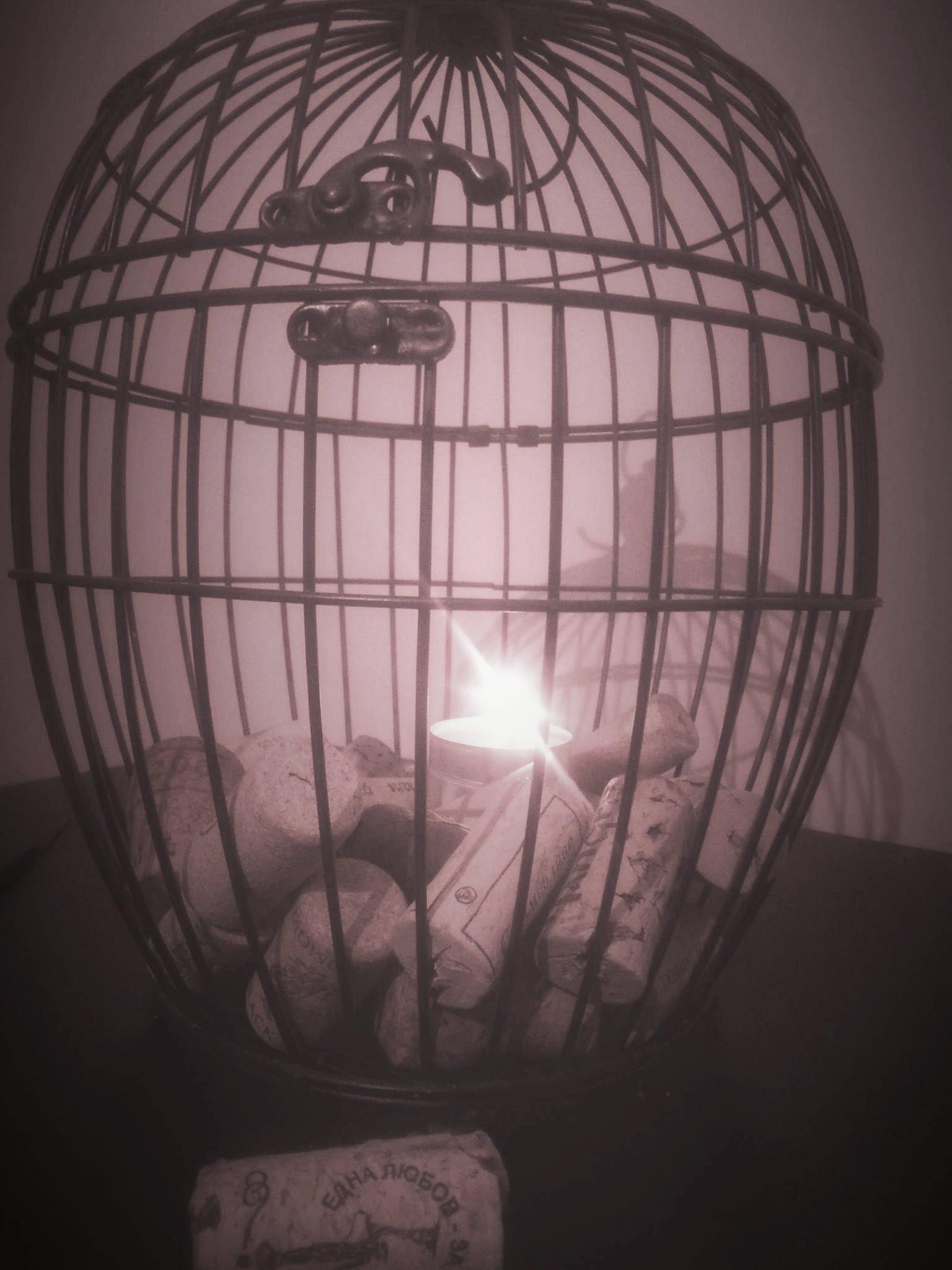 Клетка от птици, пълна с моменти