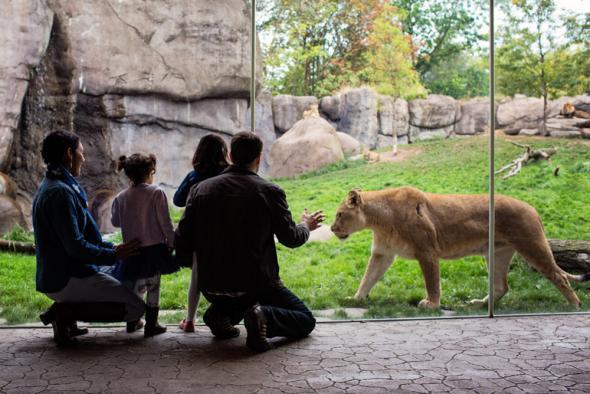 Зоопаркът