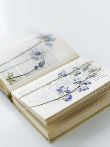 Цветя в книги