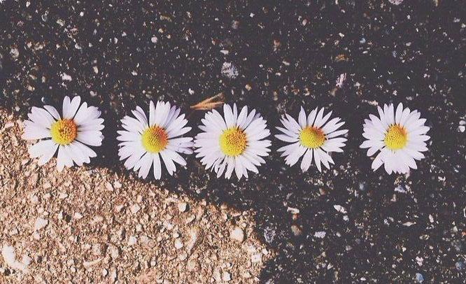 пролет - цветя