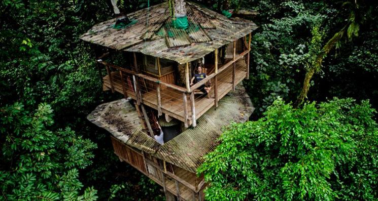 дом в дърветата