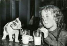 сламката за пиене