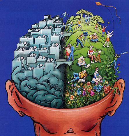 емоционална интелигентност - мозък