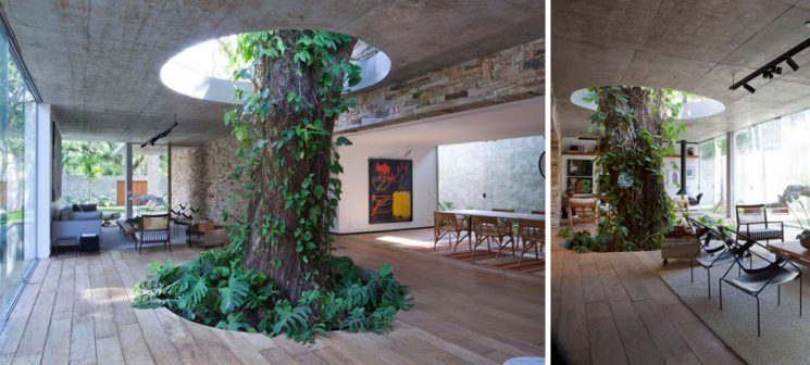 green-architecture-houses-built-around-trees-13
