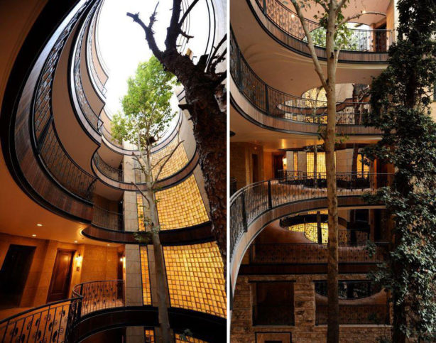green-architecture-houses-built-around-trees-14