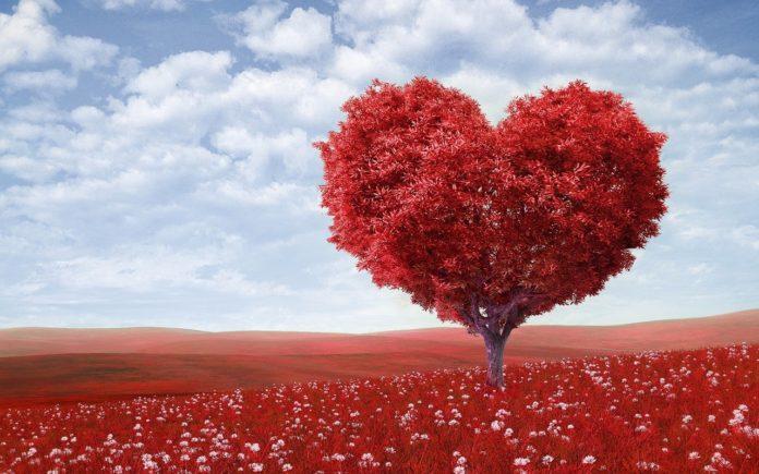 избираме - любов