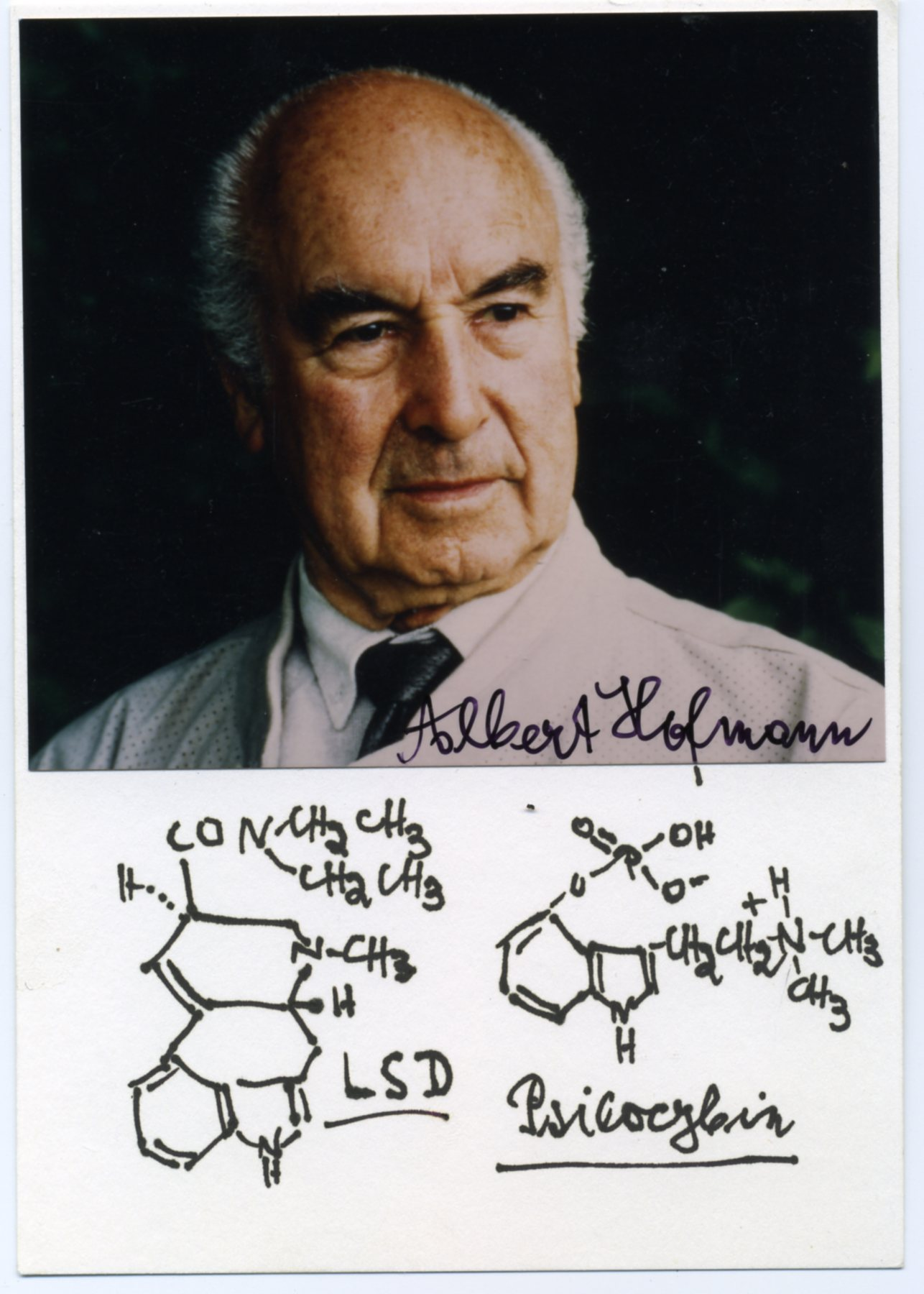 Алберт Хофман - бащата на ЛСД-то
