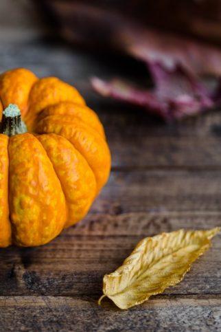 autumn-halloween-pumpkin