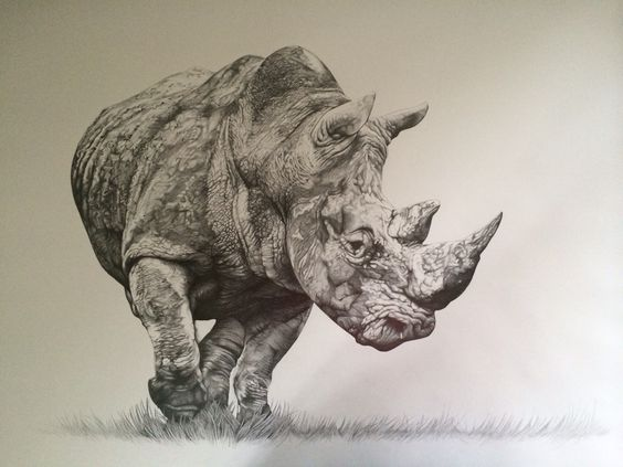 Стилиян Иванов - носорог