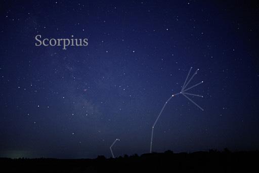 съзвездие Скорпион
