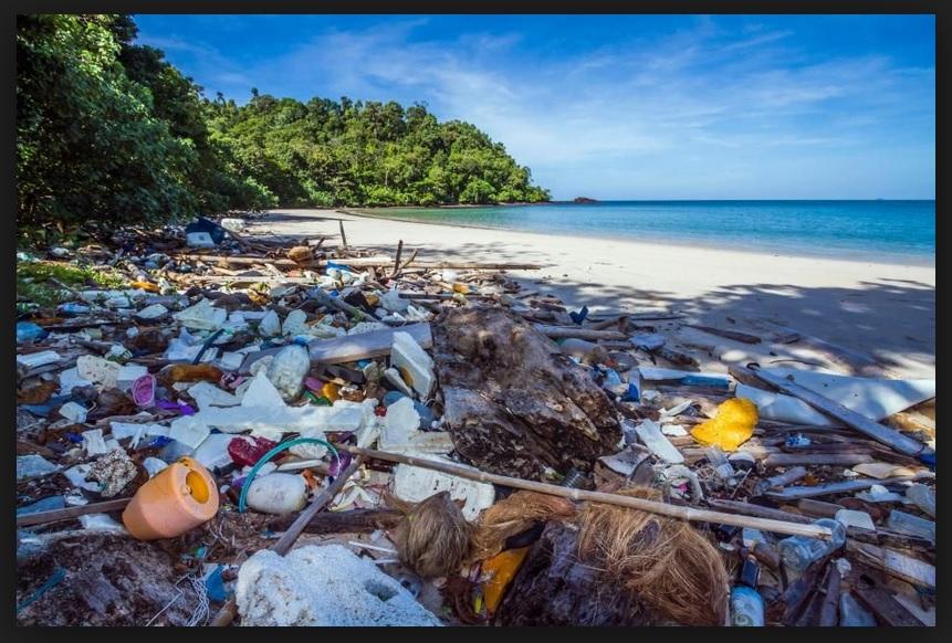 Фи Фи Плажът сметище