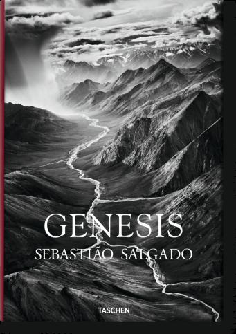 Проектът Произход на Себастиао Салгадо